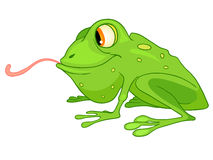 Cartoon Character Frog Royalty Free Stock Images