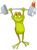 Cartoon Character Frog Stock Photos