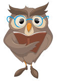 Cartoon Character Funny Owl Royalty Free Stock Photo