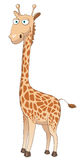 Cartoon Character Giraffe Stock Photos