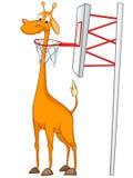 Cartoon Character Giraffe Royalty Free Stock Image