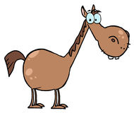 Cartoon character horse Stock Images