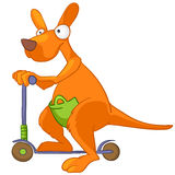 Cartoon Character Kangaroo Royalty Free Stock Images