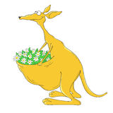 Cartoon character kangaroo on a white background. Cheerful kangaroo with flowers in the bag Royalty Free Stock Photo