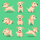 Cartoon character labrador dog poses Royalty Free Stock Images