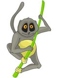 Cartoon Character Lemur Royalty Free Stock Images