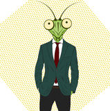 Cartoon character Mantis. Royalty Free Stock Images