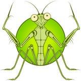 Cartoon character Mantis. Stock Photo