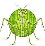 Cartoon character Mantis. Stock Photography
