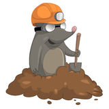 Cartoon Character Mole Stock Images