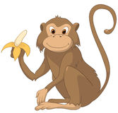 Cartoon Character Monkey Royalty Free Stock Photo