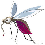 Cartoon Character Mosquito. Isolated on White Background. Vector vector illustration
