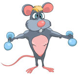 Cartoon Character Mouse Royalty Free Stock Images