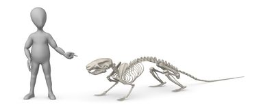 Cartoon character with mouse skeleton showing it Royalty Free Stock Photo