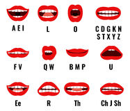 Cartoon character mouth and lips sync for sound pronunciation. Vector set animation frames royalty free illustration