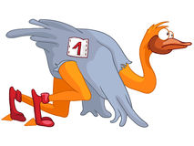 Cartoon Character Ostrich Stock Images