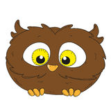 Cartoon character owlet. Little Owl  illustration Stock Photography