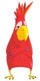 Cartoon Character Parrot Stock Image