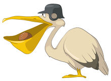 Cartoon Character Pelican Stock Photos