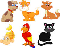 Cartoon character pets Stock Photography