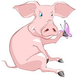 Cartoon Character Pig Royalty Free Stock Photos