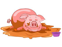 Cartoon Character Pig Stock Photography