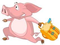 Cartoon Character Pig Royalty Free Stock Photo