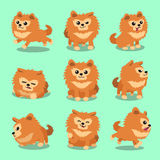 Cartoon character pomeranian dog poses Stock Photography