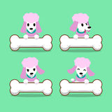 Cartoon character poodle dog with big bones. For design royalty free illustration