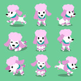 Cartoon character poodle dog poses. For design stock illustration