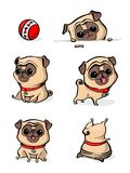 Cartoon character pug dog poses. Cute Pet dog in the flat style. Set dogs. Cute dog of pug breed. Vector collection of stock illustration