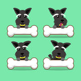 Cartoon character scottish terrier dog with big bones Stock Photography