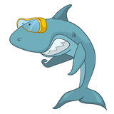 Cartoon Character Shark Royalty Free Stock Images