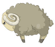 Cartoon Character Sheep Royalty Free Stock Photography