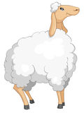Cartoon Character Sheep Royalty Free Stock Images