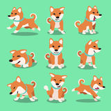 Cartoon character shiba inu dog poses Royalty Free Stock Photography