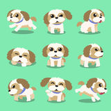 Cartoon character shih tzu dog poses Royalty Free Stock Photo