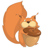 Cartoon Character Squirrel Stock Photo