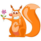 Cartoon Character Squirrel Stock Photography