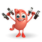 Cartoon Character of stomach with dumbbells Stock Image