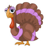 Cartoon Character Turkey Stock Photography