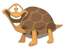 Cartoon Character Turtle. Isolated on White Background. Vector stock illustration