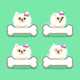 Cartoon character white pomeranian dog with big bones Stock Images