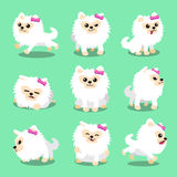 Cartoon character white pomeranian dog poses Royalty Free Stock Photos
