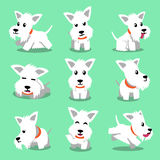 Cartoon character white scottish terrier dog poses Stock Photography