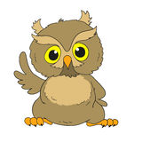 Cartoon character wise owl. Vector isolated. Cartoon character wise owl. Art  isolated Royalty Free Stock Photos