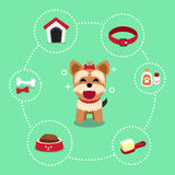 Cartoon character yorkshire terrier dog and accessories set. For design Stock Photography