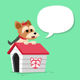 Cartoon character yorkshire terrier dog and kennel with speech bubble. For design Stock Photo