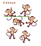Cartoon characters - monkey. S - posing. For vector mode body parts are made as separate curves, so you can pose your monkeys almost infinitely Stock Photography
