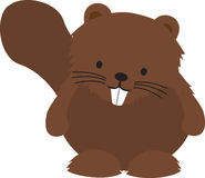 Cartoon of a cheeky funny beaver Royalty Free Stock Images